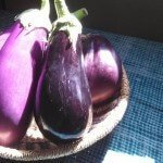 Eggplants For Skin And Hair- Benefits Beyond Belief