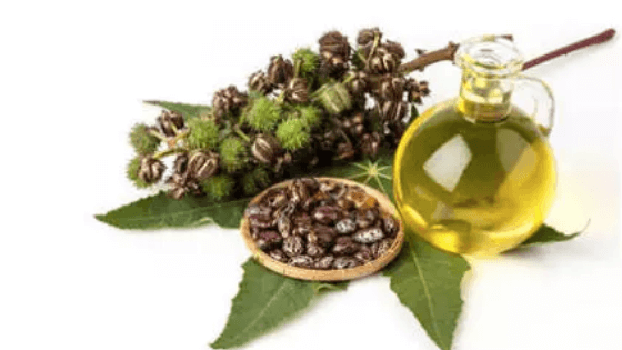 Natural skin care castor oil